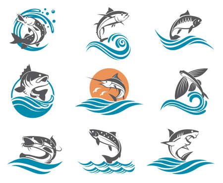 Collection of different fish types with waves