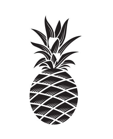 illustration of pineapple tropical fruit