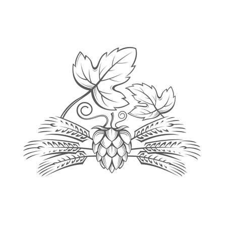 black: Black illustration of hop and barley ear for brewing.