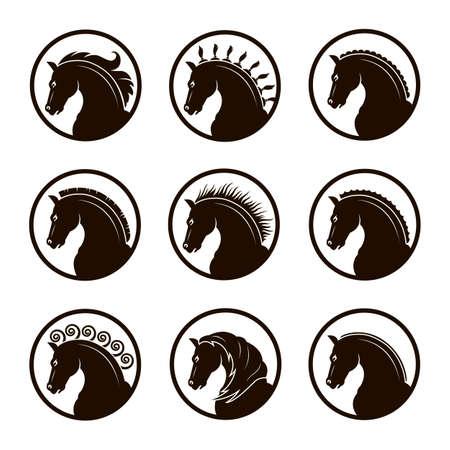 말의 다른 머리의 컬렉션입니다.