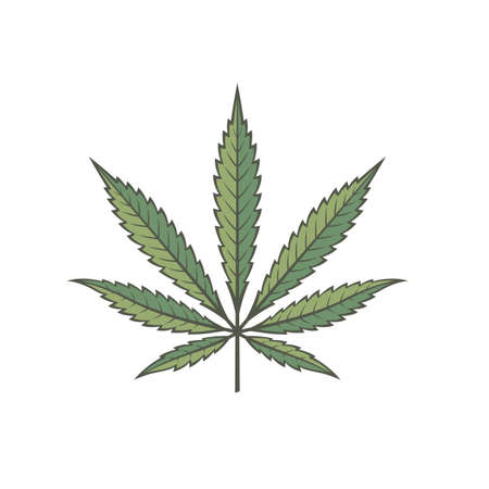 illustration of marijuana or cannabis leaf isolated on white background Illustration
