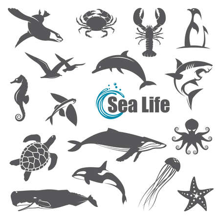 collection of black sea animals isolated on white background Illustration