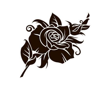 black rose flower image isolated on white background