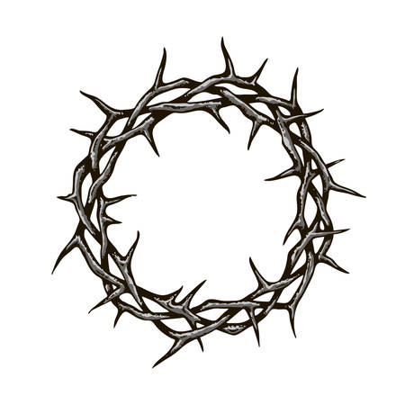 black crown of thorns image isolated on white background Standard-Bild - 122119614