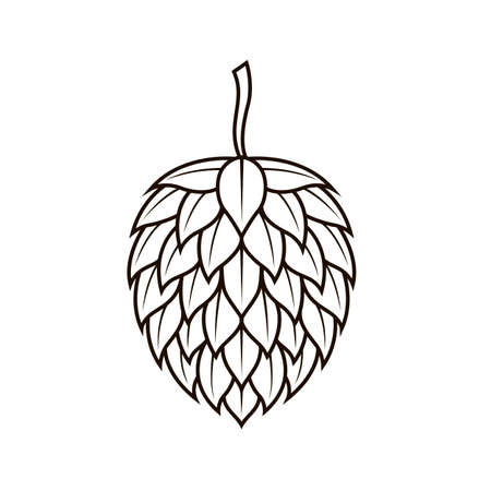 hop cone icon for brewing isolated