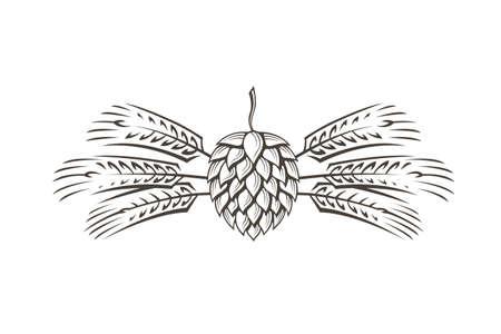 black illustration of hop and barley for brewing