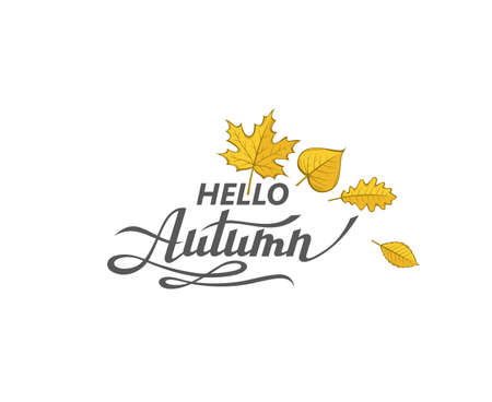 hello autumn label Vectores