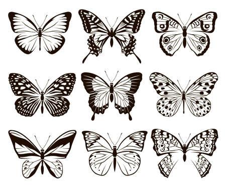 Colección monocromática de mariposas aisladas sobre fondo blanco.