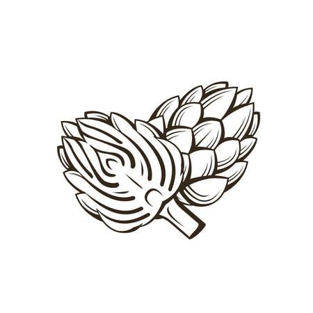 black artichoke bud vegetable illustration isolated on white background