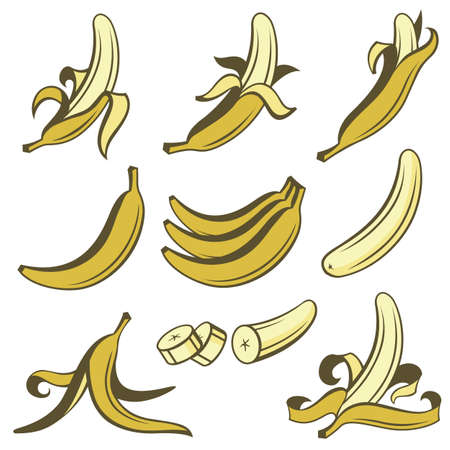 collection of banana tropical fruit isolated on white background 向量圖像