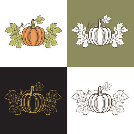 collection of vegetable pumpkins with green leaves isolated 矢量图像