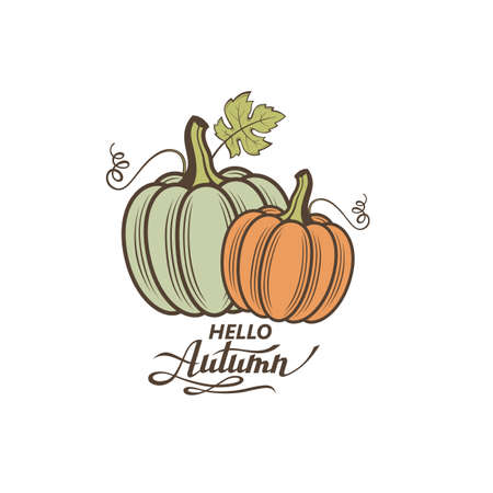 illustration of vegetable pumpkins with green leaves isolated on white background 矢量图像