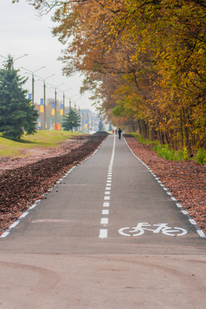 Bicycle lane along the road in Ukraine