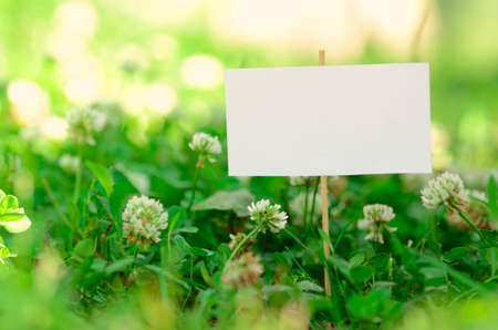 Empty signboard on green grass photo