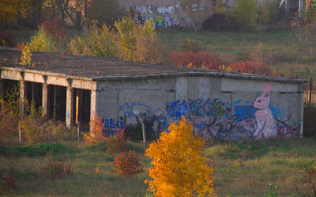 Graffiti on the Old Building