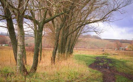 Countryside Zdjęcie Seryjne