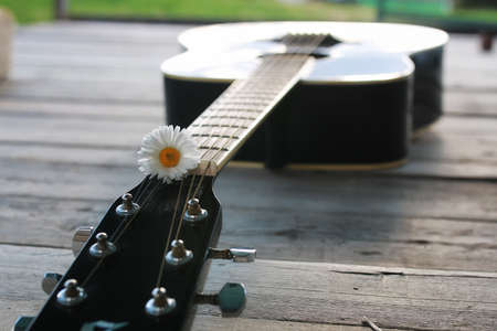 ballad: guitar string and daisy flower on the deck