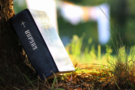 inscription on the book of the Bible Bible with cross in nature Stock Photo