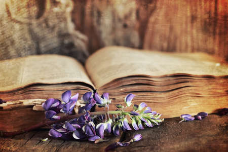 bible flower: old tattered book on a wooden table textural found an artifact of history