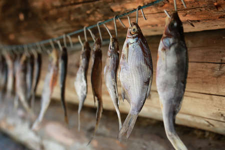 fish drying on a rope trditional north snack for beer