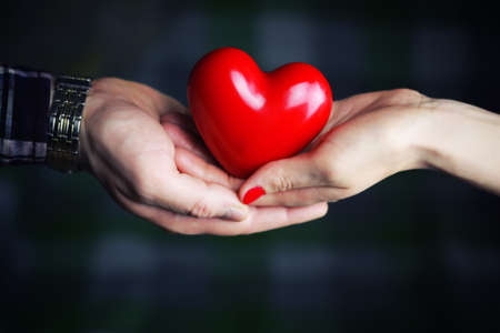young love: object red heart-shaped hands holding a young person