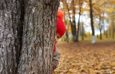 warm clothing: kid in autumn park hidden behind tree and smile