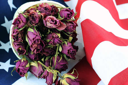 ve: US flag rose flower