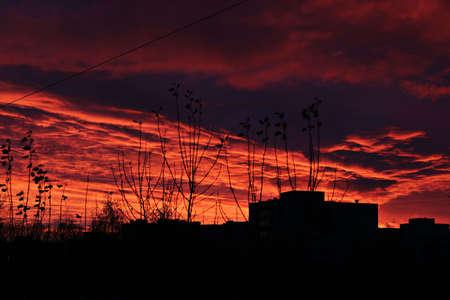 sunset  outline house
