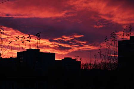 red sunset sky in the city and silhouettes of buildings Stock Photo