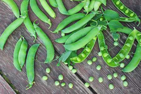 pea pod: various objects of the summer season in the best of this wonderful period Stock Photo