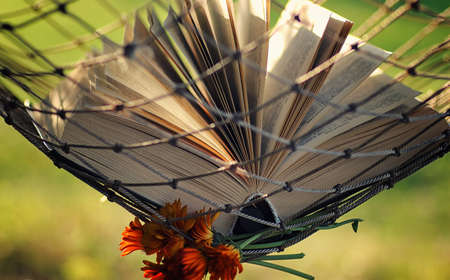 novel: various objects of the summer season in the best of this wonderful period Stock Photo