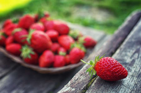 chessman: delicious fresh ripe and fragrant strawberries in a basket of wicker Sprig