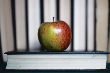 textbooks to prepare for the new academic year at school and an apple Stock Photo