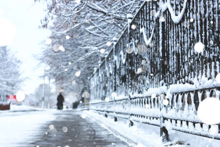 winter weather: various objects of the winter season and lanscape in the best of this wonderful period