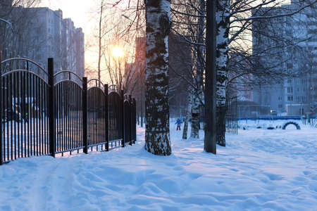 winter landscape iron fence at sunset