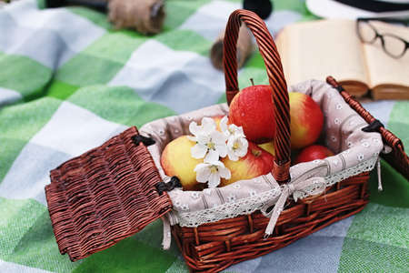 book and basket with food on plaid picnic in park