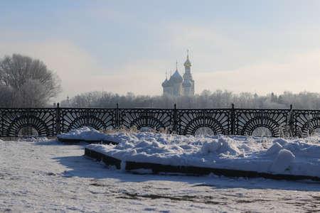 Winter tree fence dome Stock Photo