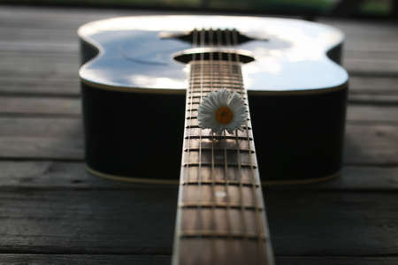 guitar acoustic black glossy six-string playing in nature Stok Fotoğraf - 87042939