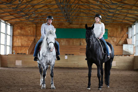 shire horse: People on a horse training in a wooden arena