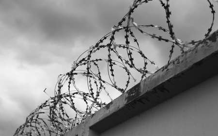 barbed wire fence: Concrete wall with barbed wire on the fence  Stock Photo