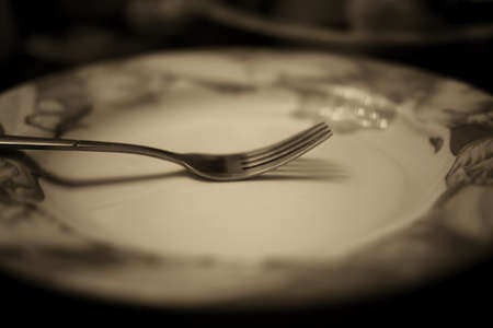 toned fork in plate monochrome
