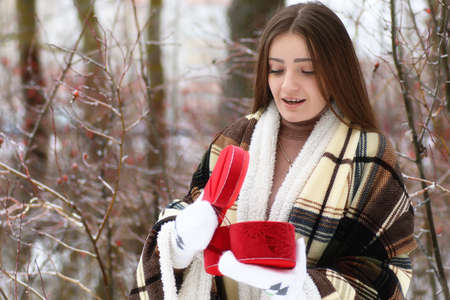 palle di neve: Young beautiful girl in winter snowy day