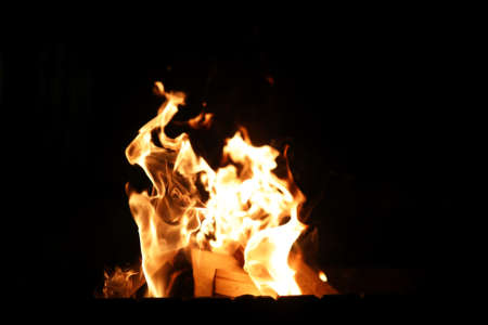 smolder: Tongues of a flame of fire of orange-yellow color from burning firewood