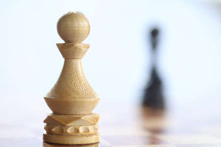The concept of the chess game