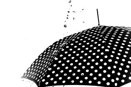 Rain drops on an umbrella isolated on the white background Imagens