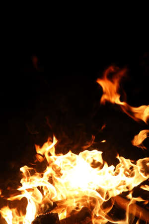 Tongues of flame of fire of orange-yellow color from burning fir