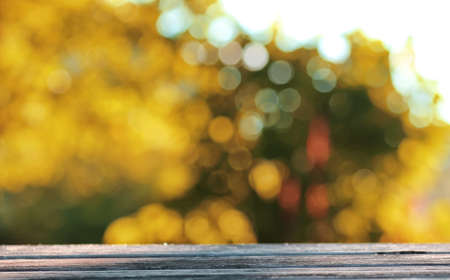 background table wooden autumn outdoor bokeh Stock Photo