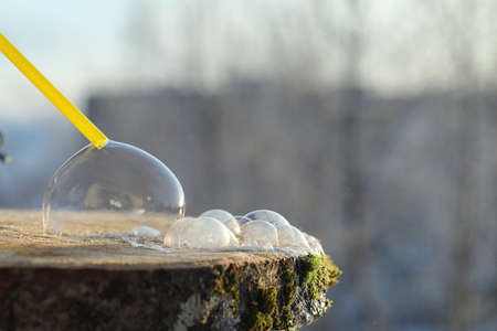 Soap bubbles freeze in the cold. Winter soapy water freezes in air.