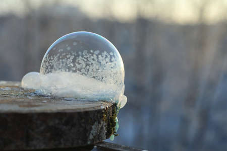 Soap bubbles freeze in the cold. Winter soapy water freezes in t