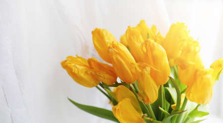 A bouquet of yellow tulips in a vase on the windowsill.